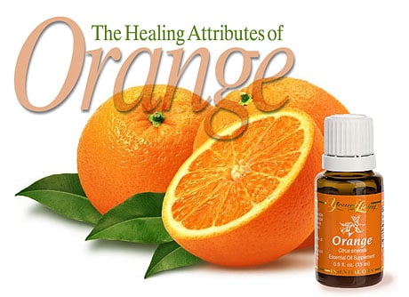fresh oranges with orange essential oil | Copyright © Cynthe Brush