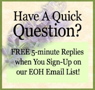 quick question icon