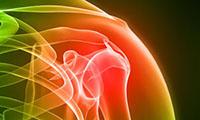 shoulder joint illustration